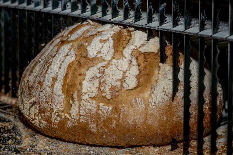 proveedores de panaderia y reposteria